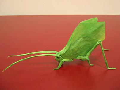arts-ori-katydid-enlarged.jpg